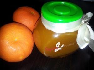 marmellata di mandarini - paprica e cannella